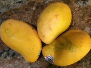 The Mango I used